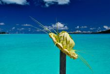 Free Tropical Hat Against Lagoon Background Stock Photos - 14063923