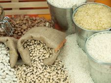 Free Beans Stock Photos - 14064803