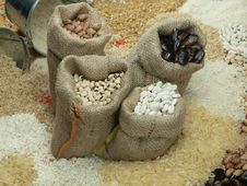 Free Beans Stock Image - 14065081