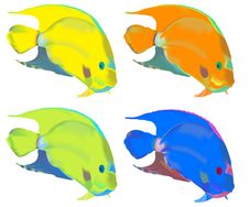 Free Colorful Fishes Royalty Free Stock Photo - 14067805