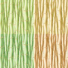 Free Bamboo Seamless Pattern Royalty Free Stock Photo - 14068585