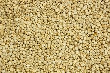 Free Coffe Bean Royalty Free Stock Photo - 14068885