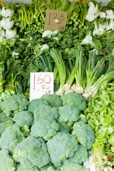 Free Vegetables Stock Photo - 14069660
