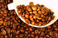 Free Coffee Royalty Free Stock Image - 14074296