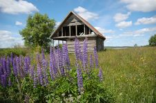 Destroyed Wooden House In The Field Stock Images