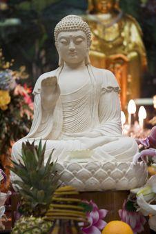 Free Buddha Statue Royalty Free Stock Photography - 14070717
