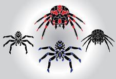 Free Spiders Tattoo Silhouetts Set Stock Photography - 14070862
