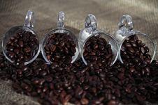 Free Coffee Beans Royalty Free Stock Photos - 14071168
