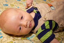 Free Baby Boy Royalty Free Stock Images - 14073989