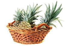 Crop Pineapples Stock Images
