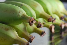 Green Banana Royalty Free Stock Photos