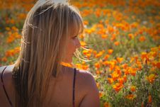 Free Sexy Female Models In California Poppy S Stock Image - 14077621