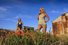 Free Sexy Female Models In California Poppy S Royalty Free Stock Image - 14077626