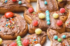 Free Biscuits Royalty Free Stock Images - 14078009