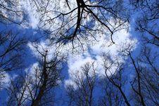 Free Sky Stock Photography - 14079452