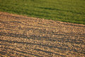 Free Newly Ploughed Agricultural Field In Spring Royalty Free Stock Photography - 14081997