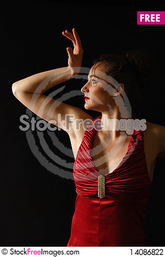 Free Portrait Of The Woman Stock Photography - 14086822