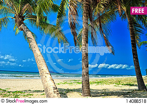 Free Beach Royalty Free Stock Photos - 14088518