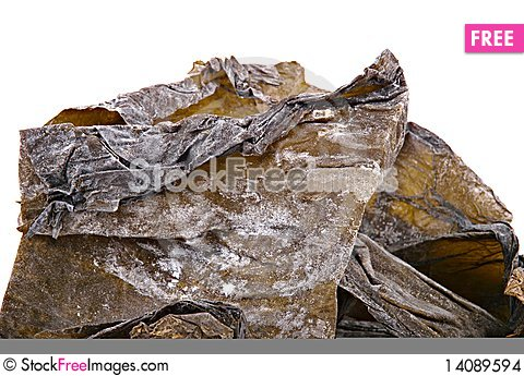 Free Dry Seaweed Stock Images - 14089594