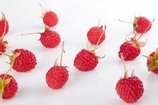 Free Raspberry Stock Photo - 14080850
