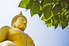 Free Golden Buddha Royalty Free Stock Photography - 14080917
