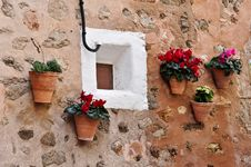Free Pots With Flowers Royalty Free Stock Photos - 14081198