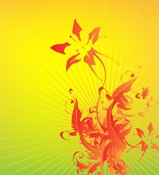 Free Floral Background Stock Images - 14081384