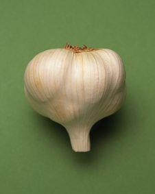 Head Of Garlic Royalty Free Stock Image