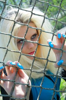 Free Blonde Stands Near Metallic Net Stock Image - 14084461