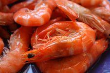 Free Delicious Boiled Shrimps Closeup Royalty Free Stock Photos - 14086008