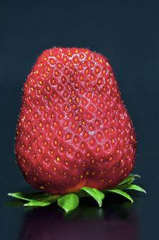 Free Strawberry Stock Image - 14086551