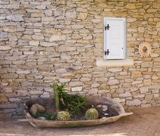 Free Flowerbed With A Cactus In A Tub Near The Wall Royalty Free Stock Image - 14086856