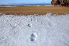 Footprints On Empty Beach On A Cold Winters Day