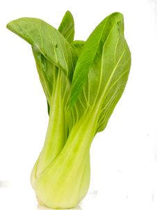 Spinach Cabbage Royalty Free Stock Photo