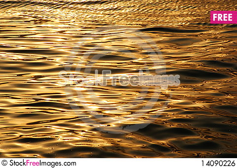 Free Waves Of The Sea Royalty Free Stock Image - 14090226