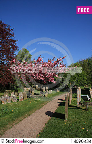 Free Springtime In The Churchyard Stock Images - 14090434