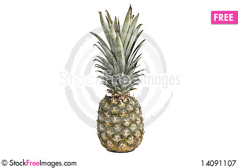Free Pineapple Royalty Free Stock Photography - 14091107