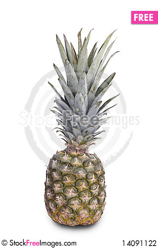 Free Pineapple Isolated On White Stock Photography - 14091122