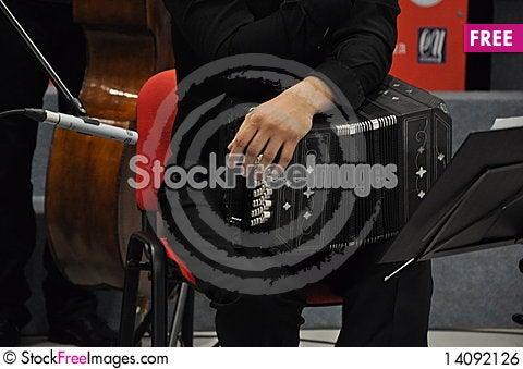Free Bandoneon Player Royalty Free Stock Image - 14092126