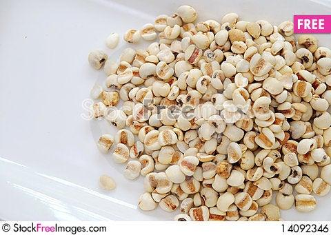 Free Dried Barley Seeds Royalty Free Stock Image - 14092346