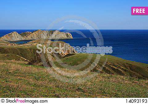 Free Cape Chameleon. Photo 9408 Stock Photos - 14093193