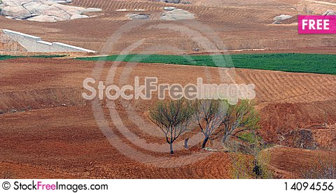 Free Spring Fields Royalty Free Stock Image - 14094556