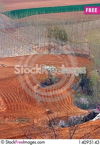 Free Overlook Field Stock Photos - 14095143