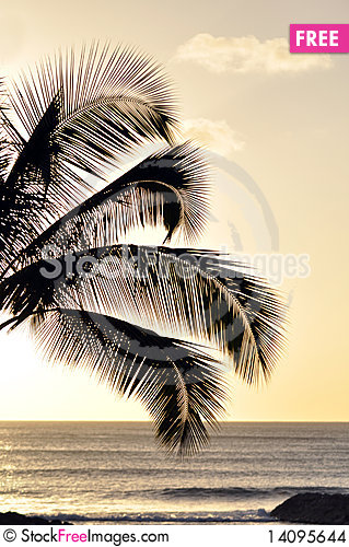 Free Hawaiian Sunset Stock Images - 14095644