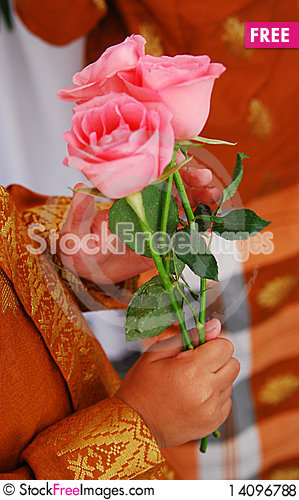 Free Kid Holding Roses Royalty Free Stock Photos - 14096788