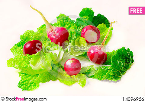 Free Redish And Lettuce Salate Royalty Free Stock Image - 14096956