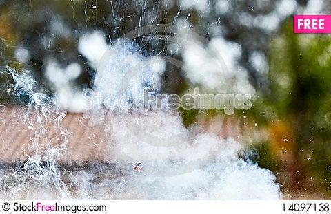 Free Firecracker Explosion Royalty Free Stock Photos - 14097138