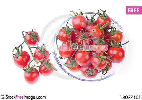 Free Pot Of Cherry Tomatoes Stock Image - 14097161