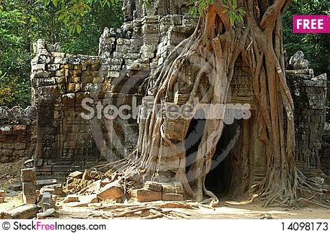 Free Angkor,Cambodia Stock Photos - 14098173