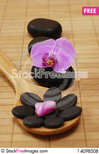 Free Spoon With Stones And The Orchid Royalty Free Stock Photos - 14098508
